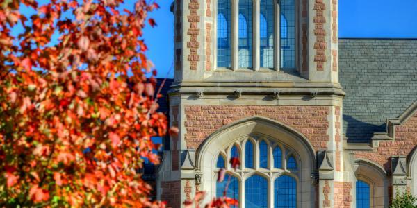 Fall on WashU campus
