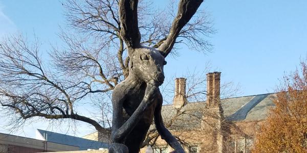 WU Thinker Rabbit